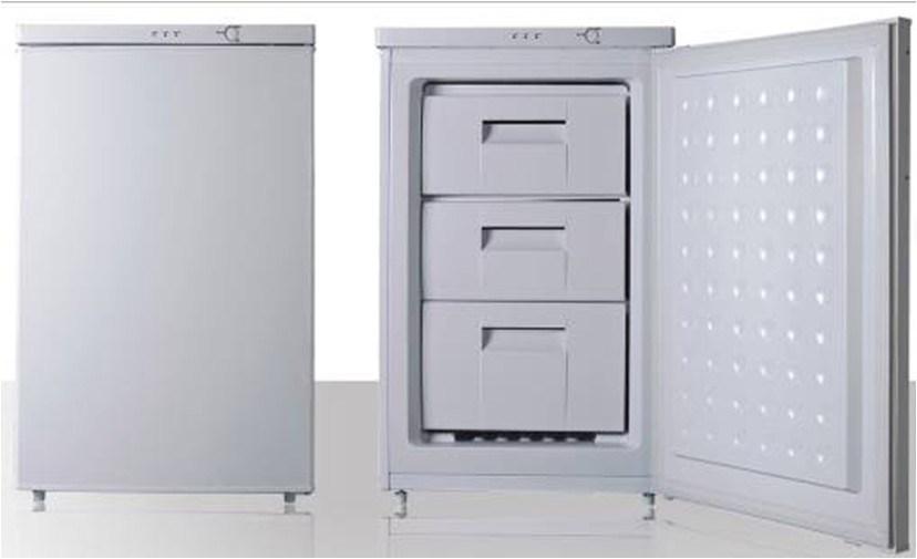 Standing Freezer (BD-88)