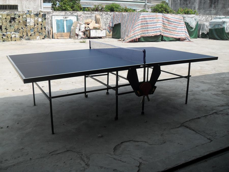 Double-Folding Table Tennis Table (TE-16)
