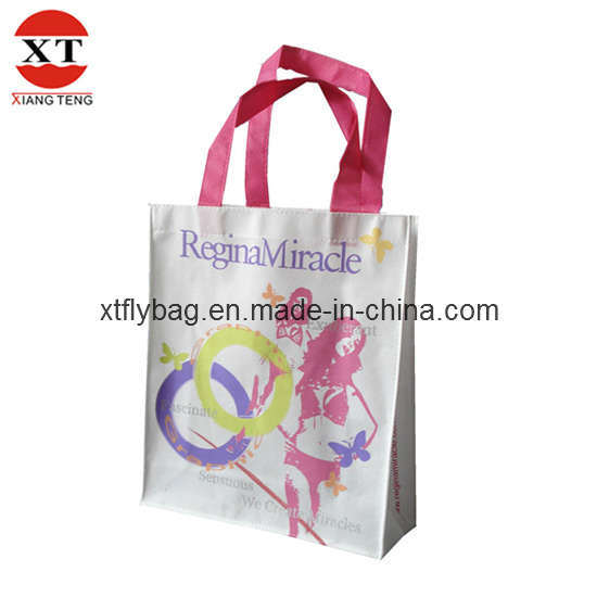 Nonwoven Shopping Bag, Non-Woven Bag (FLY-LT072)