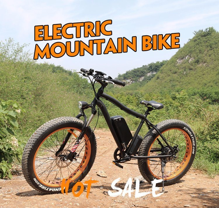 Hot Sale Electric Bike Fat Tire with 48V 750W Motor
