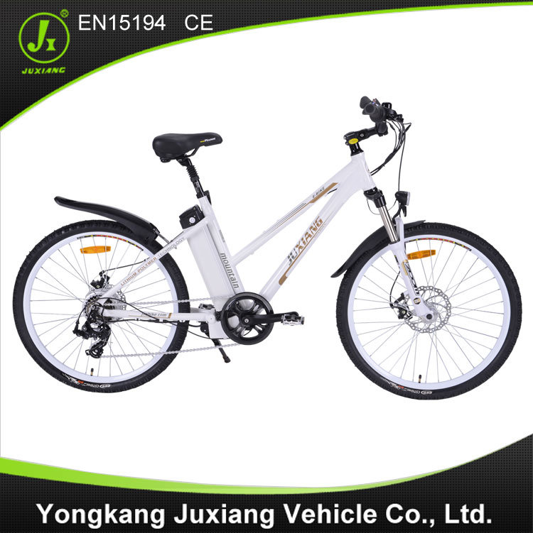 Electric Bicycle Tdf26z