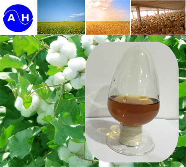 Plant Source Amino Acid 50% Free Amino Acid Low Price 100% Water Soluble