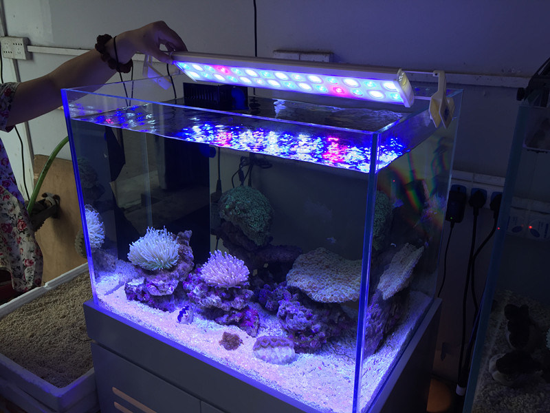 Coral Reef Used 28W LED Aquarium Tank Light