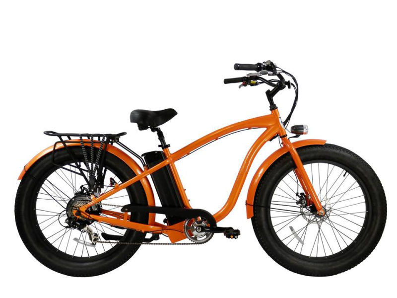 Us Popular 2017 Hot Sale Luxury Fat Cruiser Electric Bike 48V 750W with Maxiam 28mph Battery 48V 20ah