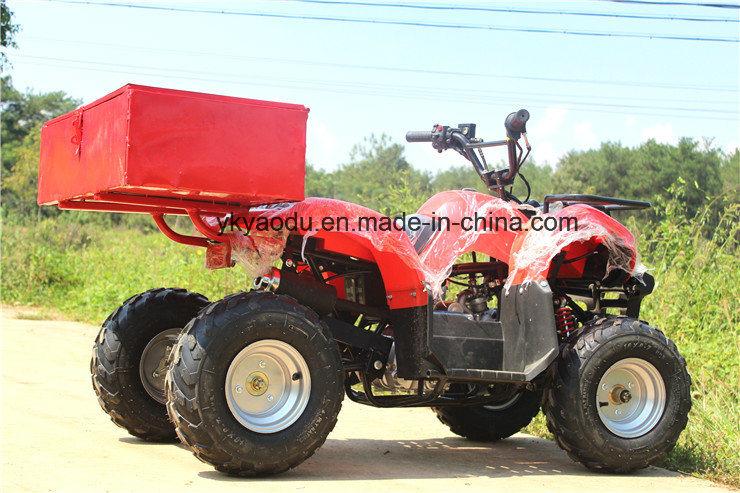 Ce 110cc Mini ATV with Chain Drive for Farm