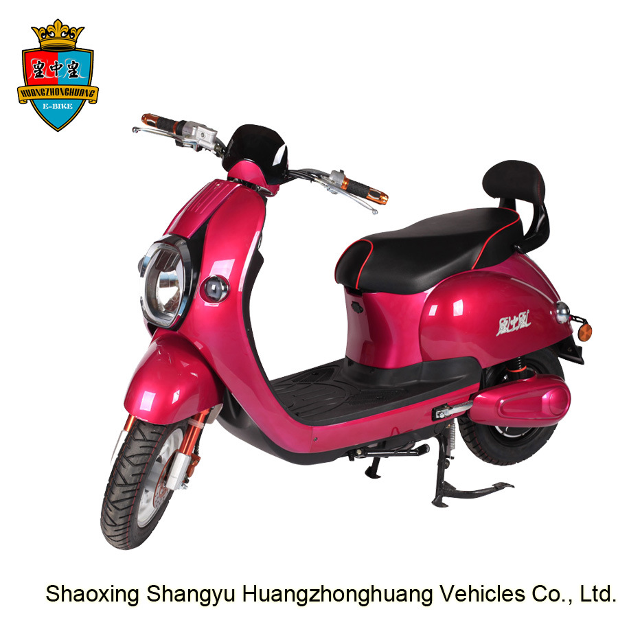 48V 20ah 800W Classic Electric E Motor Moped