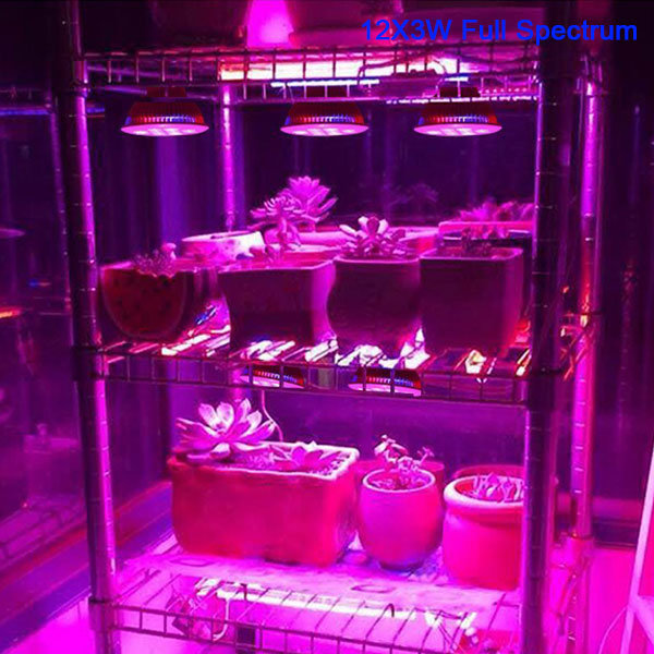 Grow Bulbs 12W PAR38 to Grow Plants Lights