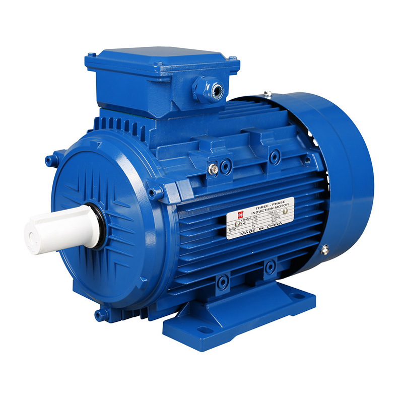 Ms Series Three-Phase Asynchronous Motor with IEC Standard
