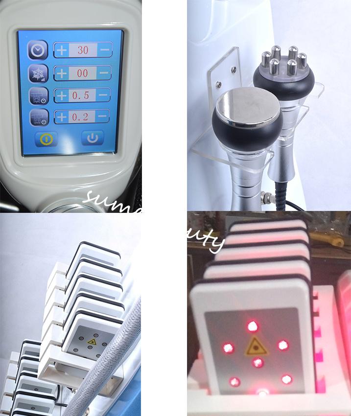 Touch Screen Cryo Cryolipolysis Handle Fat Freezing Ultrasound Cavitation RF Weight Loss Machine Lipo Laser