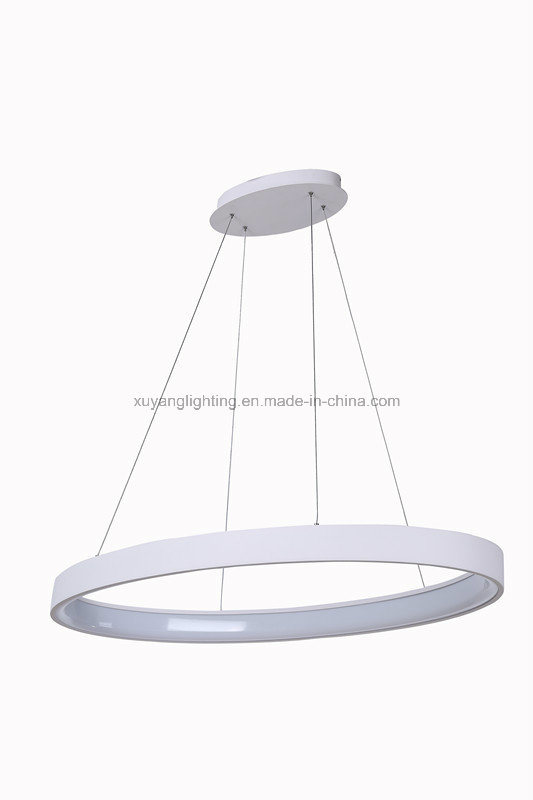 Hot Selling LED Pendant Light, LED Oval Hanging Light