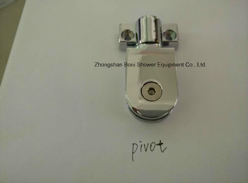 Bathroom 6mm Pivot Door Shower Enclosure