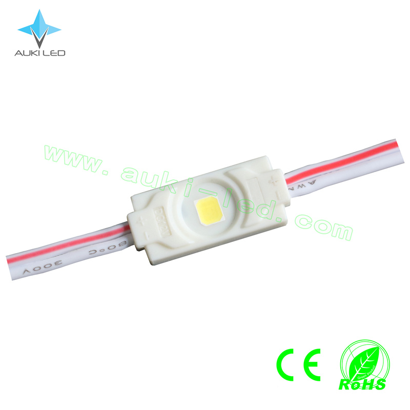 0.3W Mini LED Module Waterproof