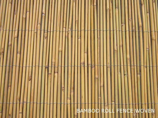 China bamboo cane fence bamboo fencing china bamboo for Uses for bamboo canes