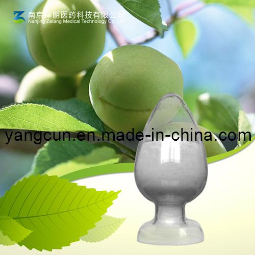 Natural Ligustrum Lucidum Extract Oleanolic Acid 98%