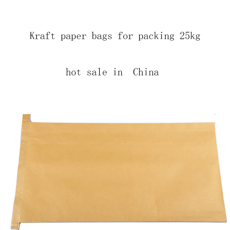 Paper and Plastic Syntactic Bag Made in China with Cheap Price