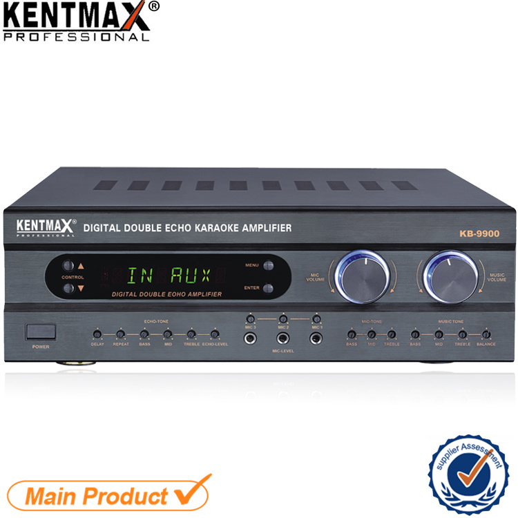 Top Sales 250 Watts Digital Double Echo Power Amplifier China