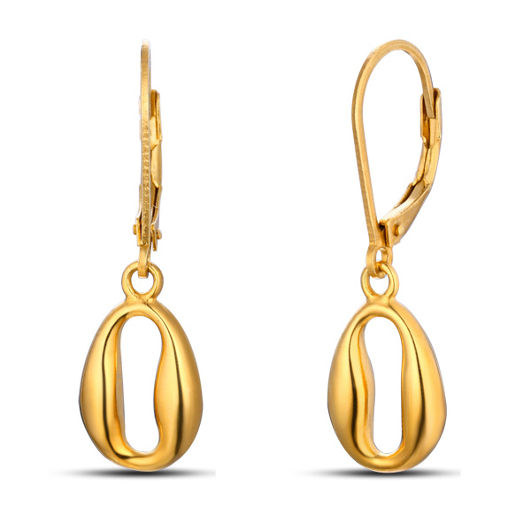 Fashion Gold Plated Hook Stainless Steel Earrings