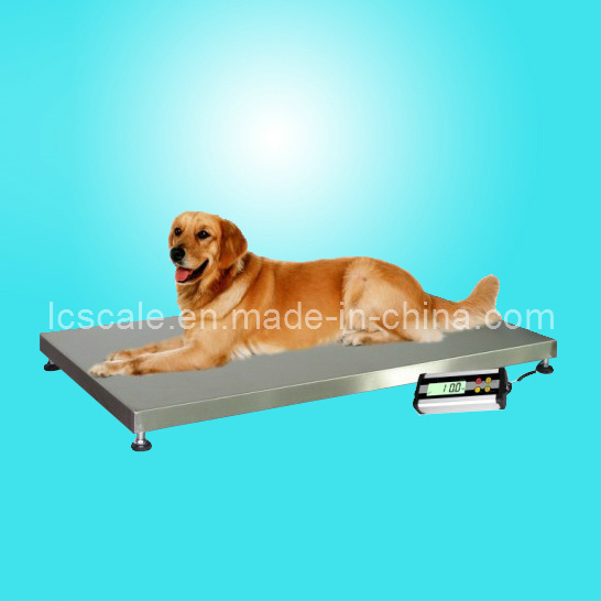 300kg Veterinary Scale/ Pet Scale