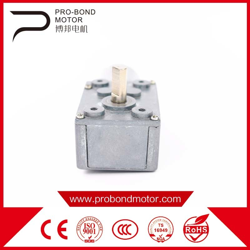 DC Worm Gear Motor 24zyj Wholesale
