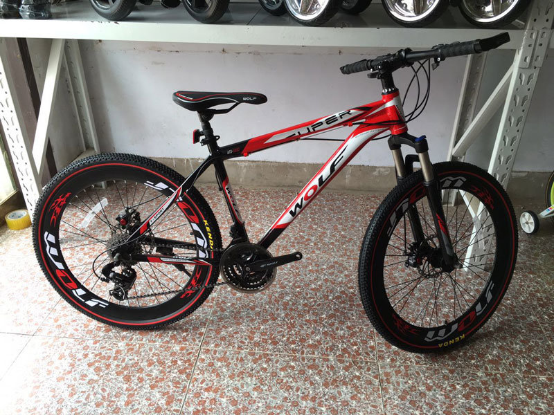 High Quality New Mountain Bike (MTB-002)