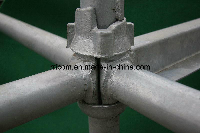 Galvanized Cuplock System Scaffolding for Construction