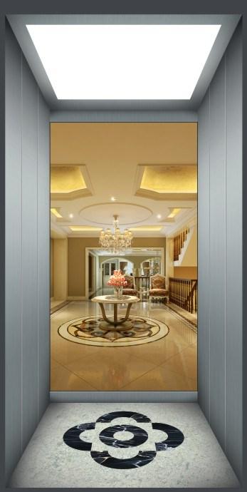 Mrl Commercial Gearless Vvvf Passenger Home Elevator
