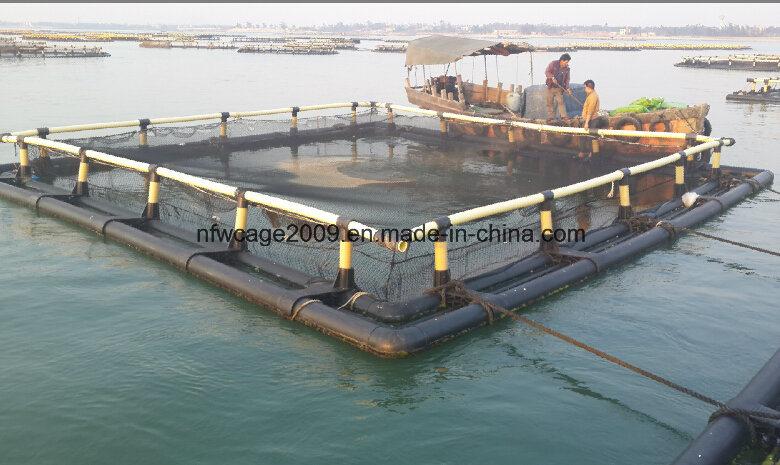 2016 HDPE Aquaculture Tilapia Fish Culture Floating Cage