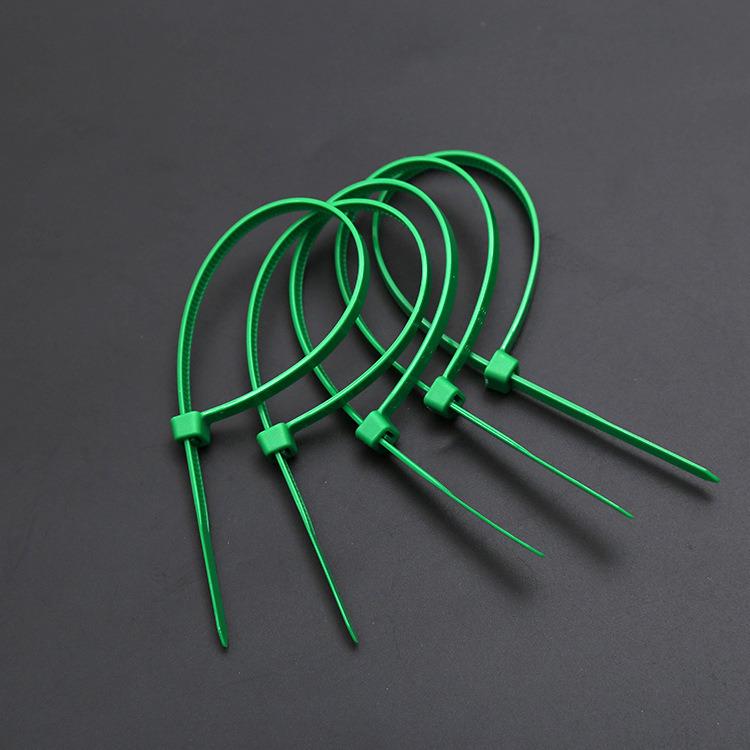 Free Sample Nylon 66 Plastic Cable Tie/ Tie Wrap