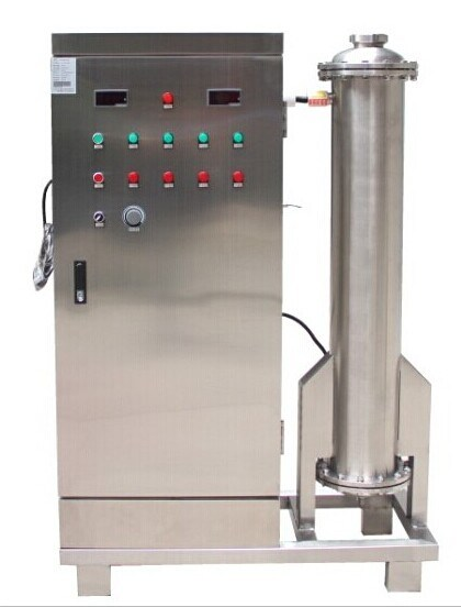 200g Industrial Ozone Generator for Food Grain Storage Disinfection