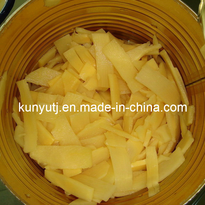 Canned Bamboo Shoot with High Quality