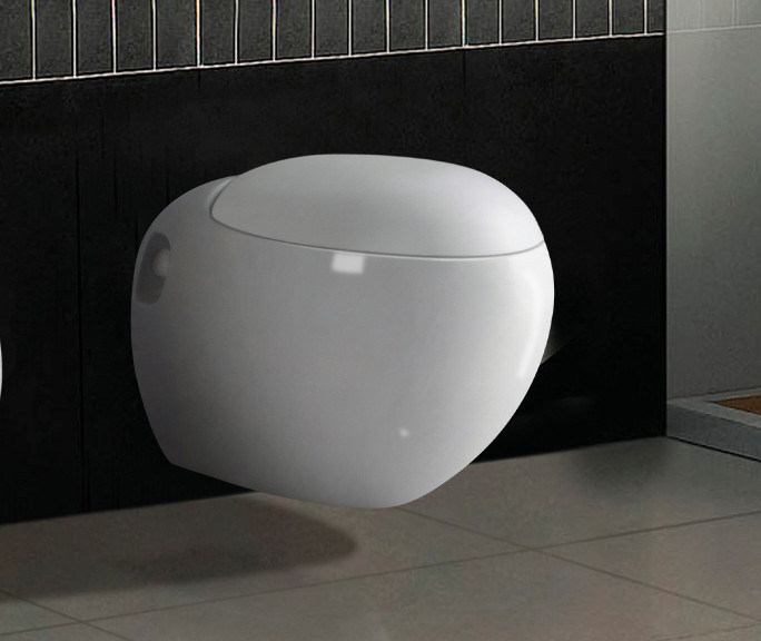 Wall Mounted Wc Toilet (CY3281B)