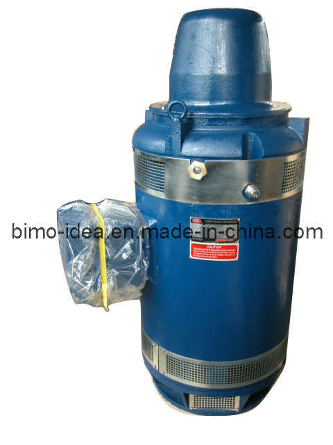 Nema Standard Vertical Hollow Shaft Motors Vhs China