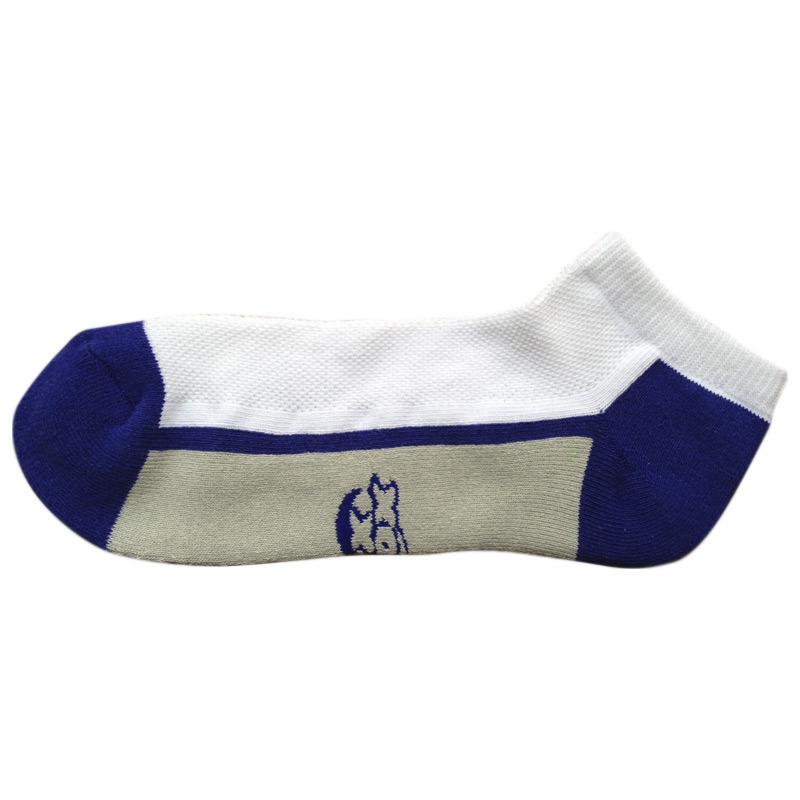 Men Women Terry Cotton Color Sports Socks (tcc-02)