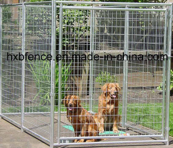 Welding Mesh Pet Safe Galvanized Dog Kennel
