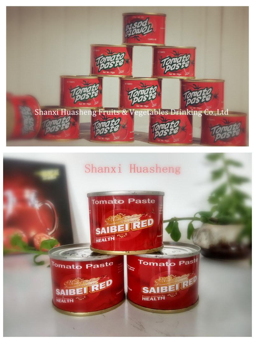 70g*50 22%-24% Tomato Paste
