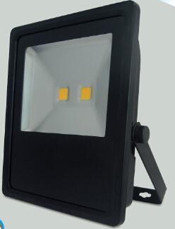 High Power Floodlight W/O Cable