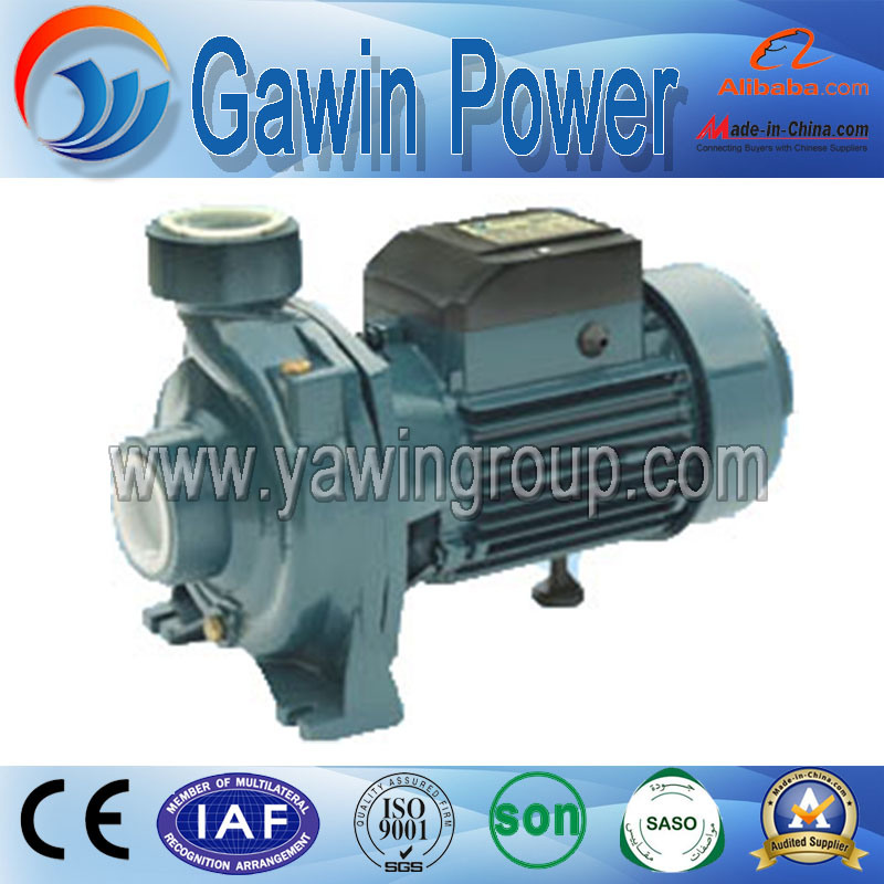 Hot Sale Dtm Series Centrifugal Pump with Brass Impeller