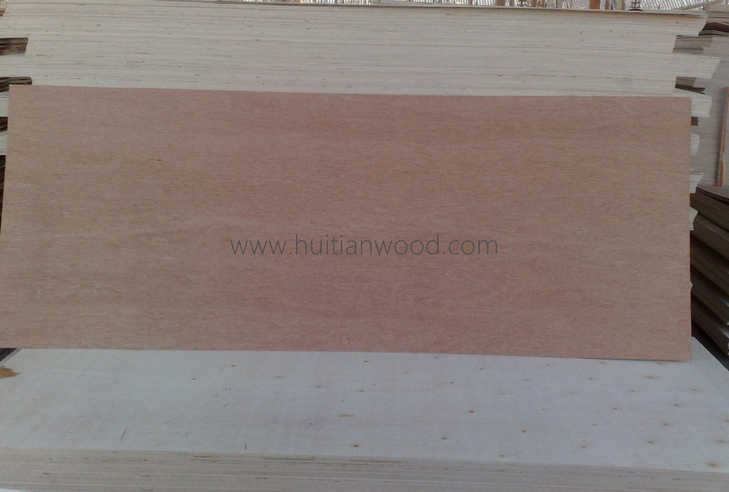 2.7mm A Grade Poplar Core Door Skin Plywood at Low Price From Linyi