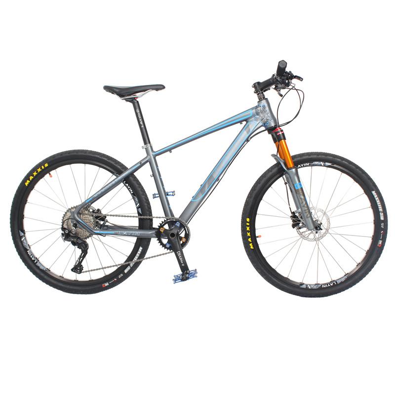 Light Weight New Fashion Aluminum Alloy Moutain Bike