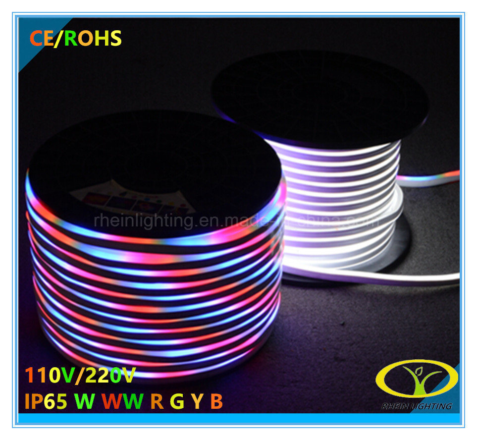 5050SMD RGB LED Neon Flex with 3 Years Warranty