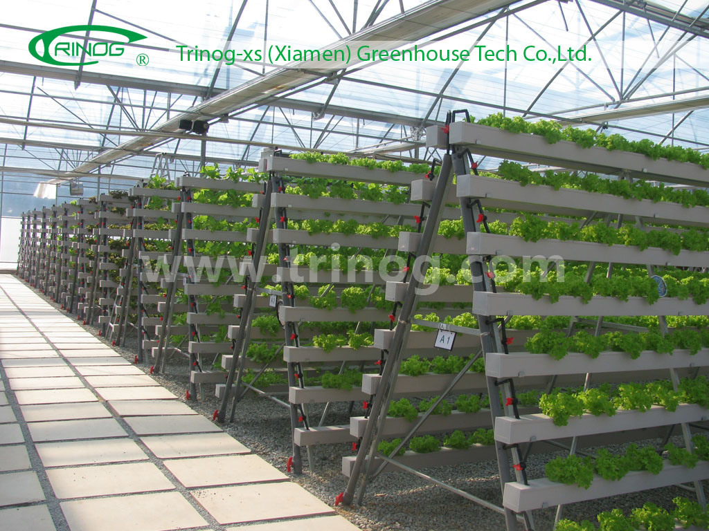 China Advanced Hydroponics Grow System NFT Photos amp; Pictures made
