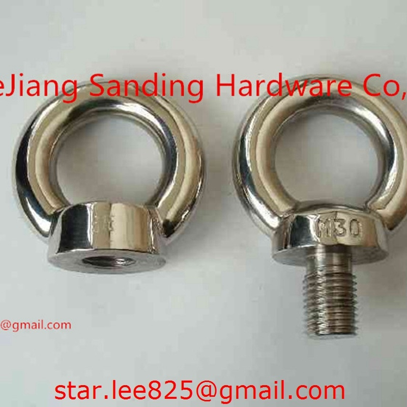 Stainless Steel 316 DIN580 Eye Bolt