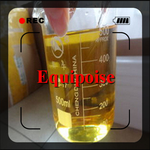 Injectable Steriod Liquid Body Supplement B. U Boldenone Undecylenate