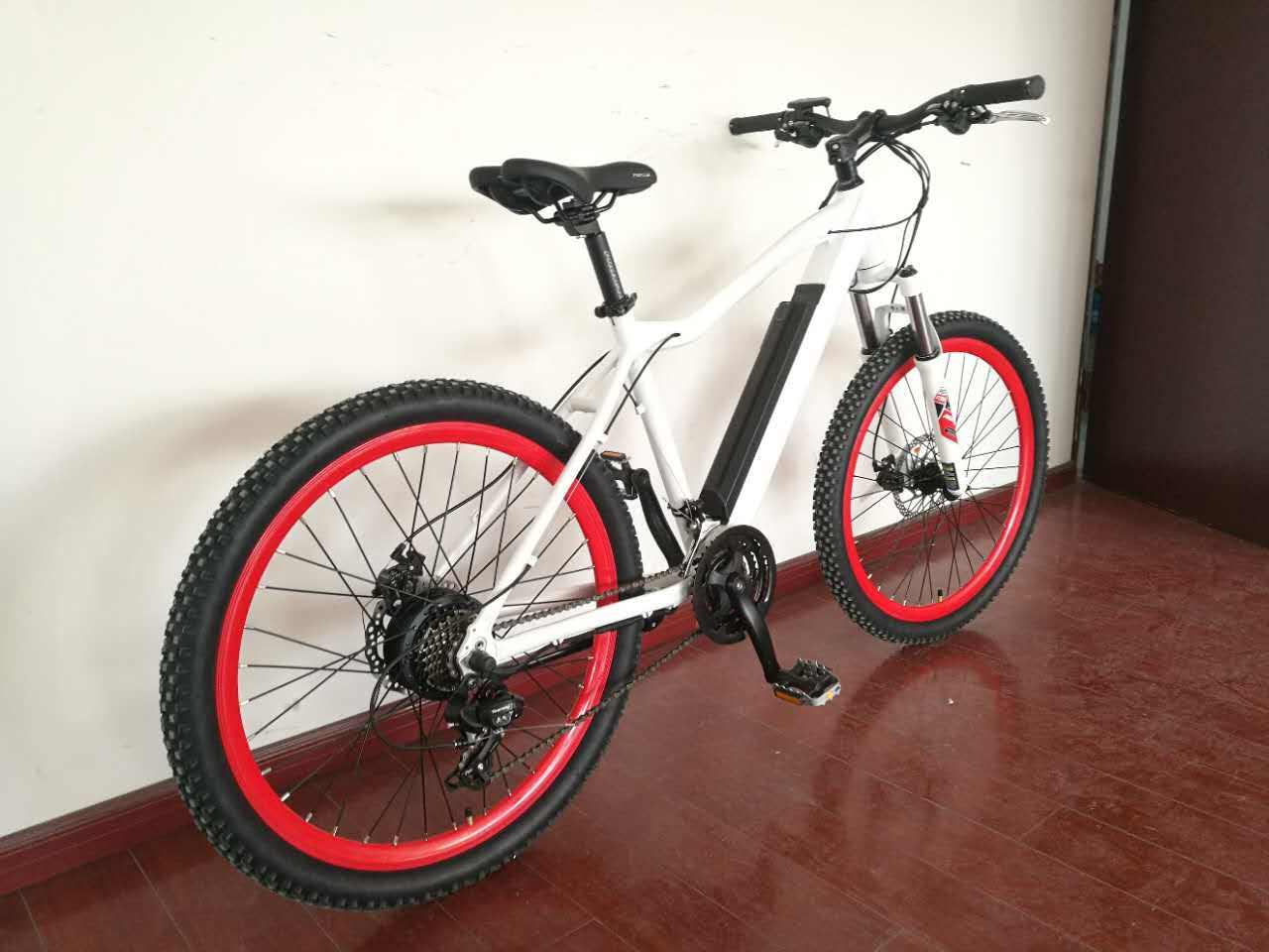 Hot Sale Torque Sensor Electric Bicycle Bike