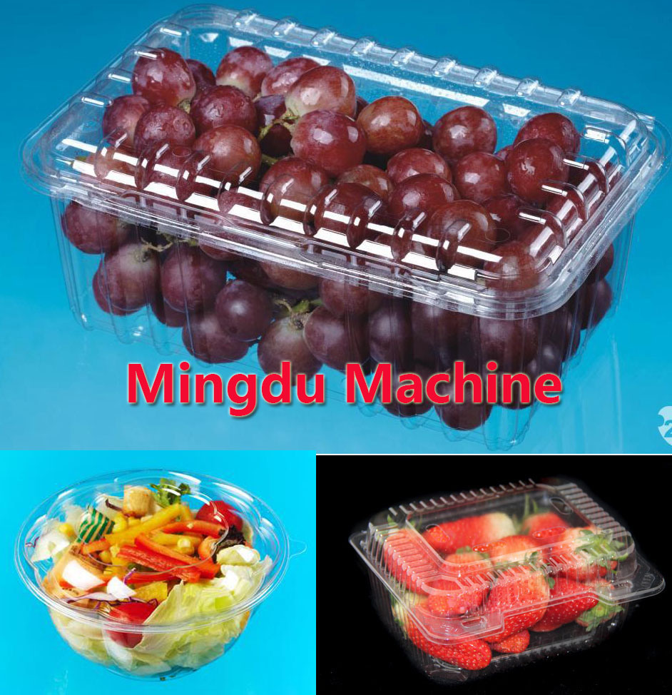 Plastic Coffee Cup Lid Medicine Tray Case Container Making Machine (model-500)