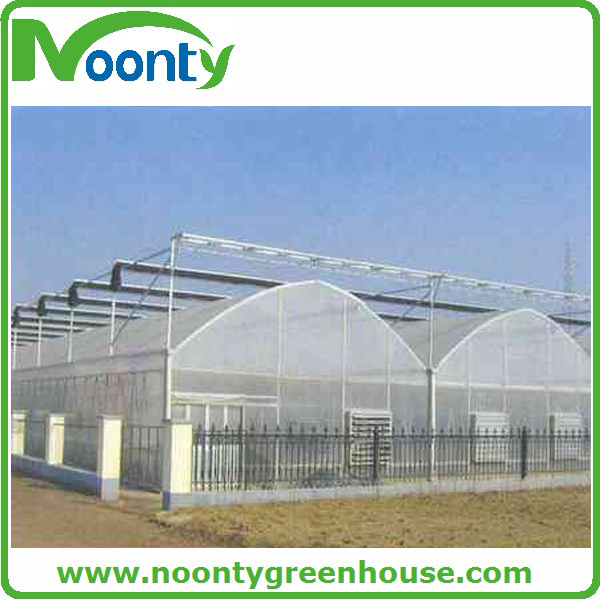 Economical Agriculture Multi-Spans Film Green House (NOONTY)