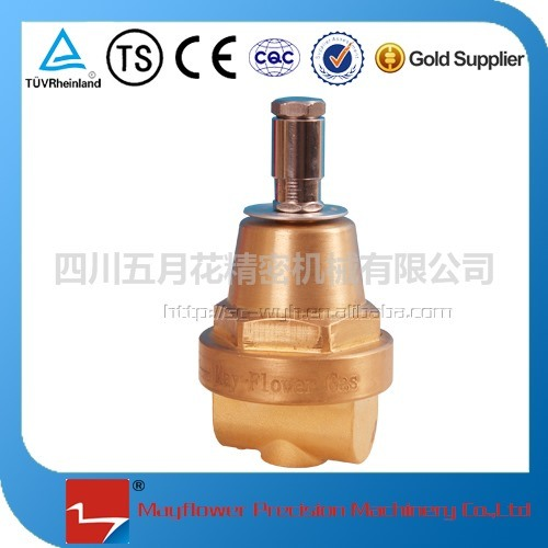 Economy Valve for LNG Vehicle Gas Cylinder