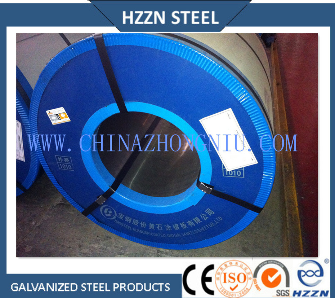 Hot Dipped Galvanized Steel Coil with SGS