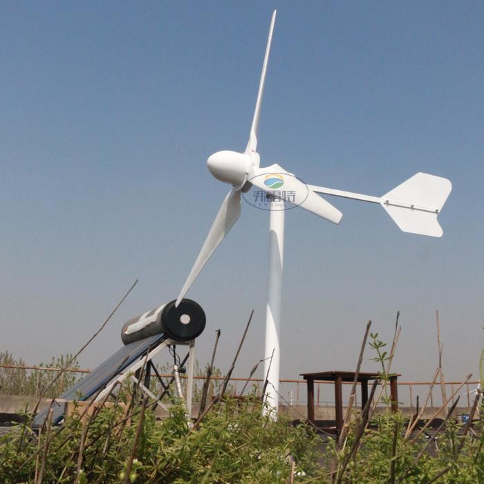1kw Max Power 2kw 48V 96V Wind Generator