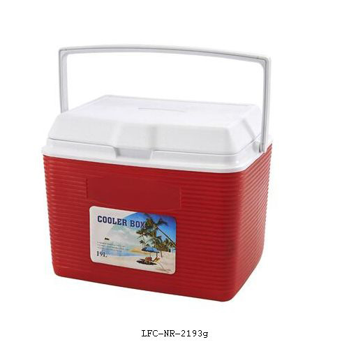 19L Plastic Cooler Box, Cooler Case, Ice Box